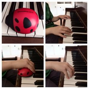 Ladybug pic